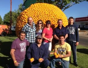2013 Citrus Sculptures